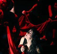 L'ultimo Inquisitore – Accadema Sofia Amendolea