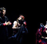 Soft Machine – Accademia Sofia Amendolea
